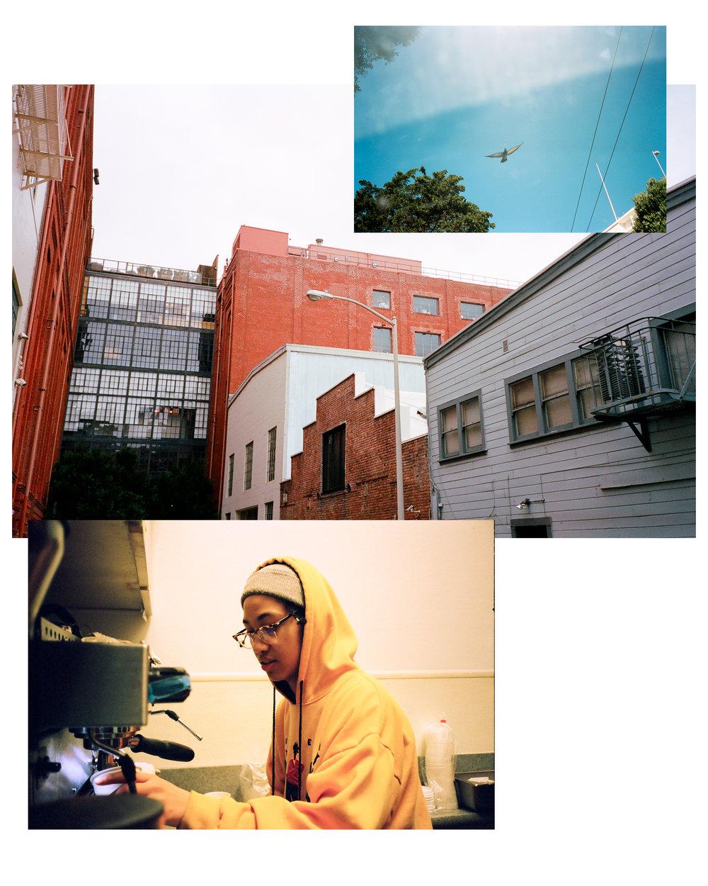 2-Little-Window-Plates-6.jpg