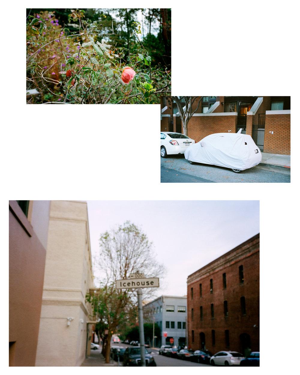 7-Little-Window-Plates-36.jpg