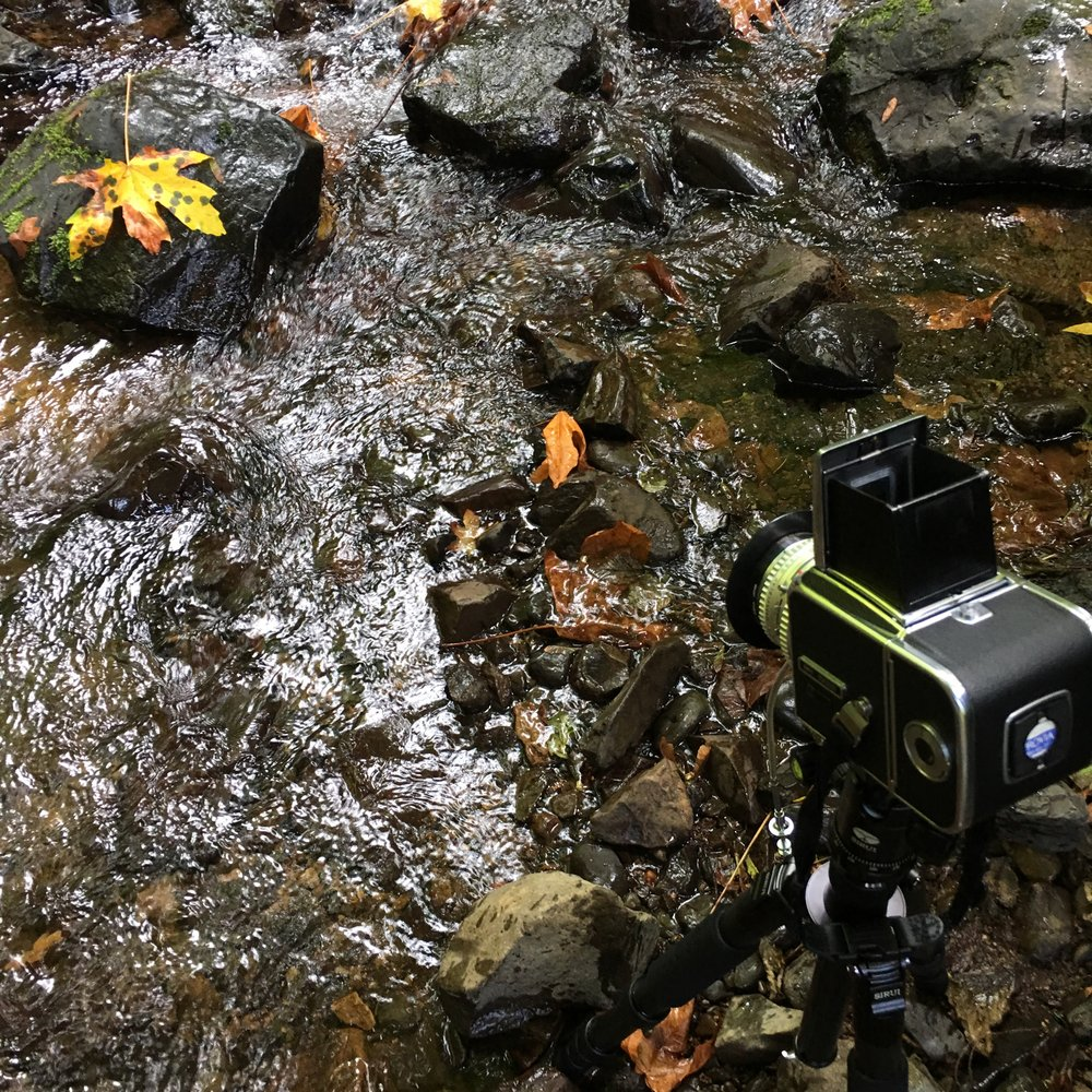 My setup in the creek. I removed the 10-stop ND filter in front of the lens since my cable shutter release just decided to break moments earlier. So I couldn't keep the shutter shutter open for an extended period of time. Fortunately, the light was dim enough to just stop down the lens for a two second exposure.