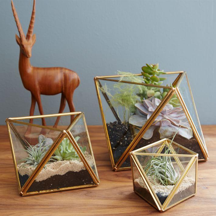faceted-terrariums-o.jpg