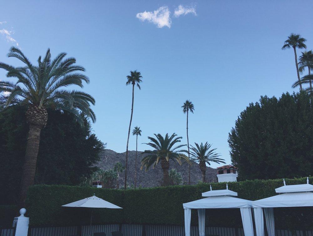 palmspringsthanksgiving17.jpg
