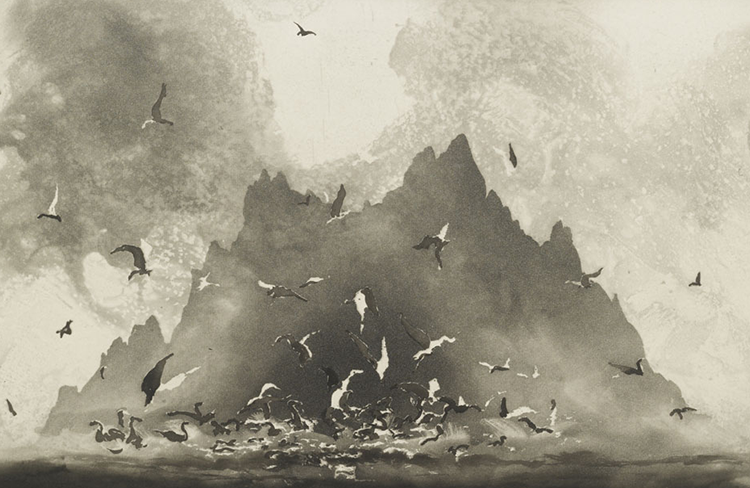 Study of Sunlight, County Kerry by  Norman Ackroyd