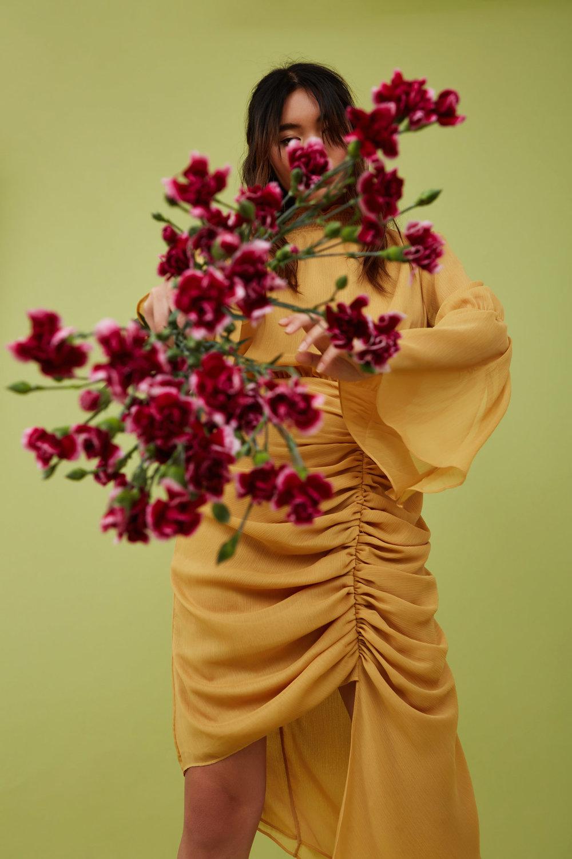 Shop Keepsake Elevate L/S Dress.