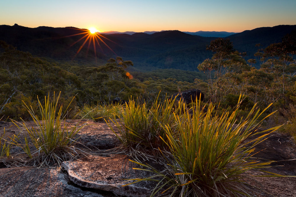 Granite Lookout, Washpool National Park [NEW15]