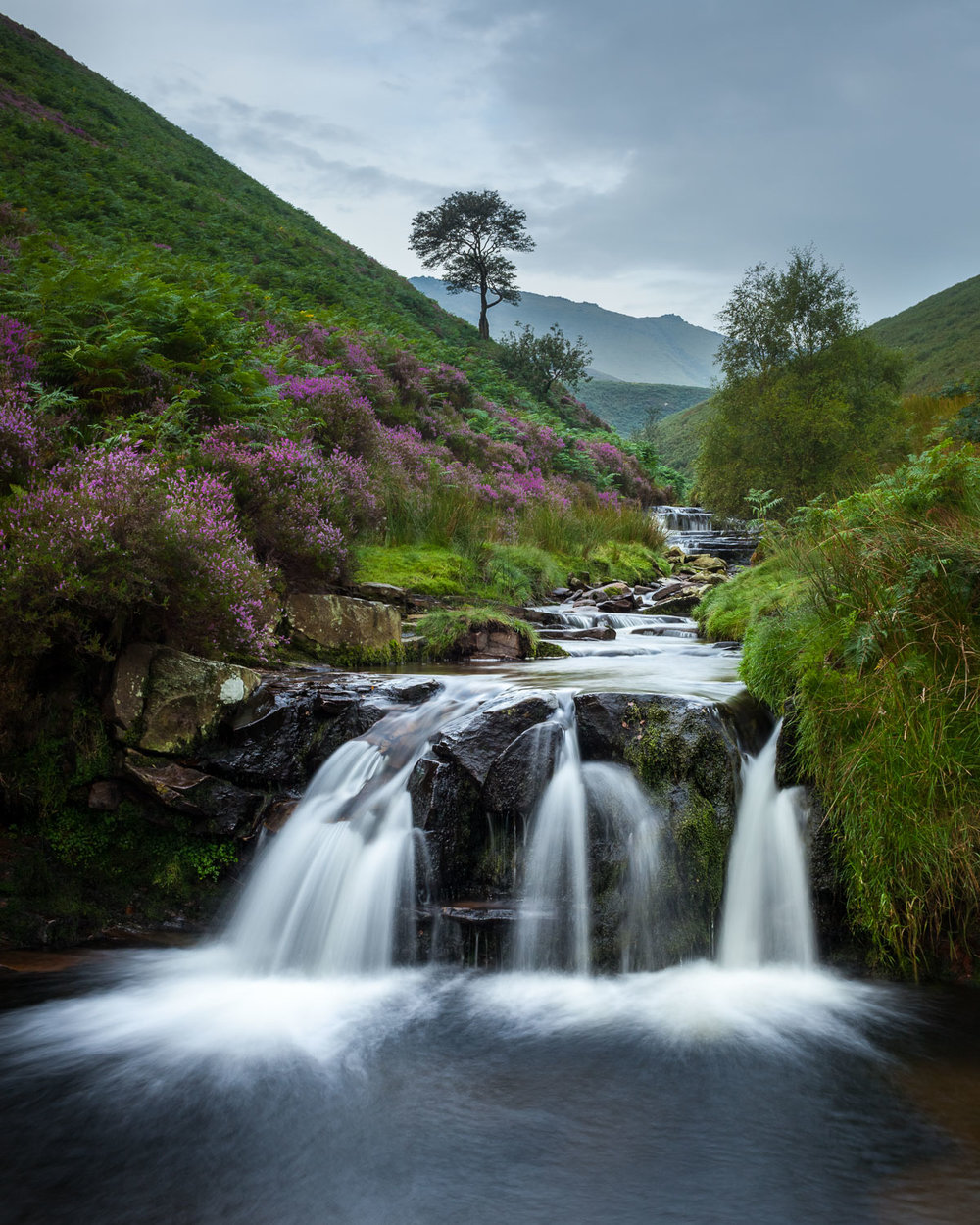 Fair Brook, Derbyshire [EW16]