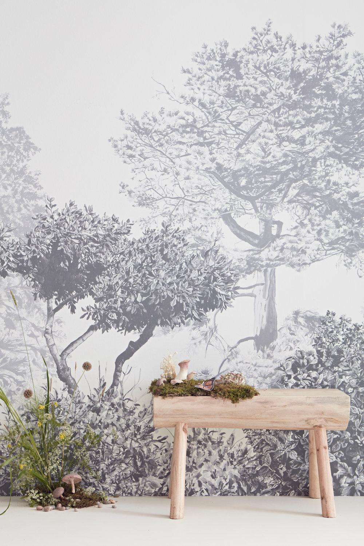 Hua Trees grey with mushrooms bench.jpg