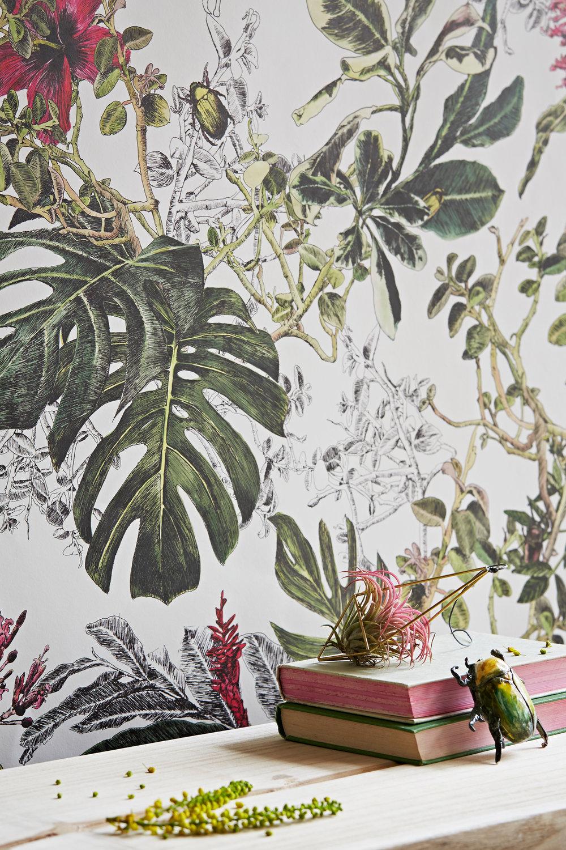Sian Zeng Summer Tropical Bloom Wallpaper Close up.jpg