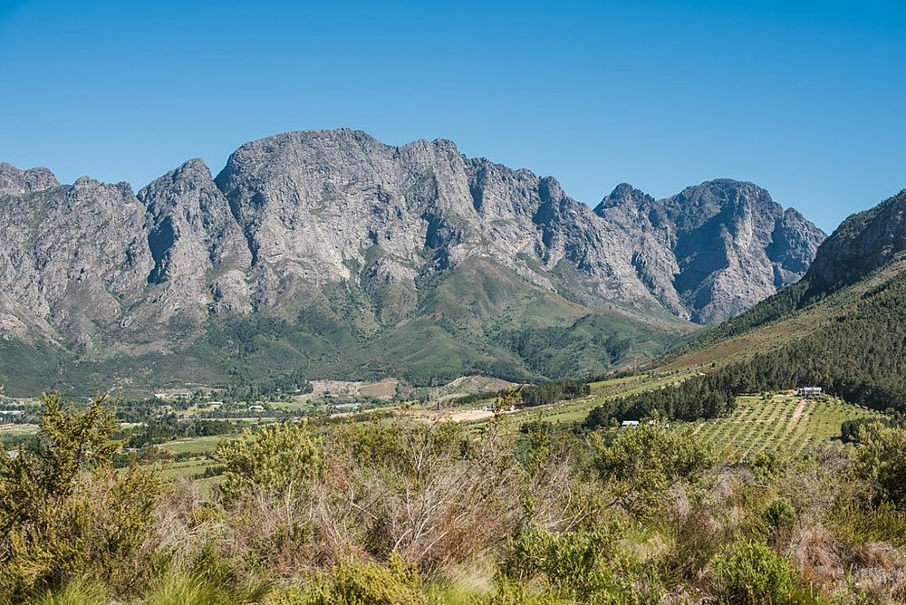 Angelique_Smith_Photography_Franschhoek_K&M-187.jpg