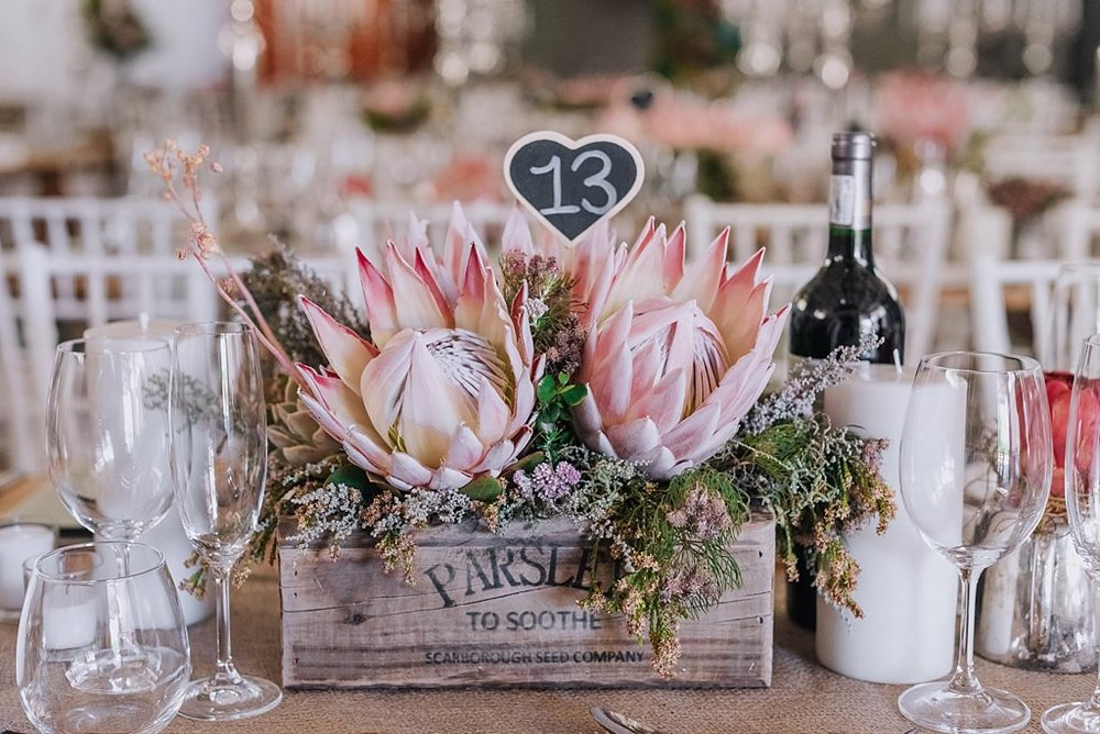 Angelique_Smith_Photography_Franschhoek_K&M-5.jpg