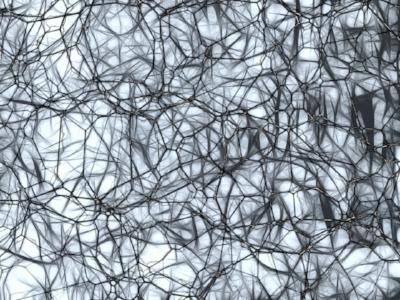 neurons-877577_960_720.jpg
