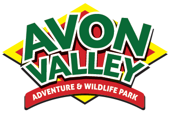 AVON-VALLEY-LOGO.png