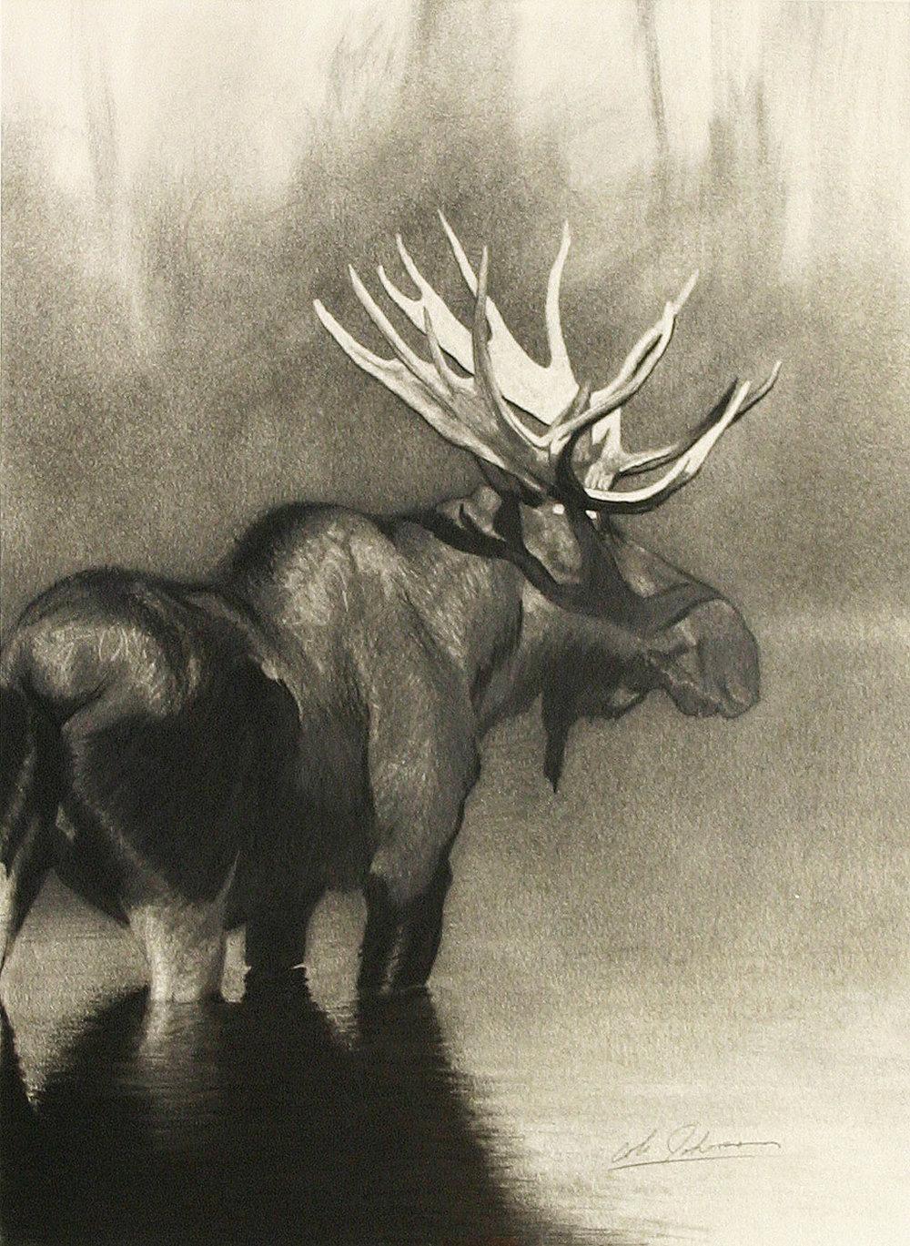 e Bull Moose 1.jpg