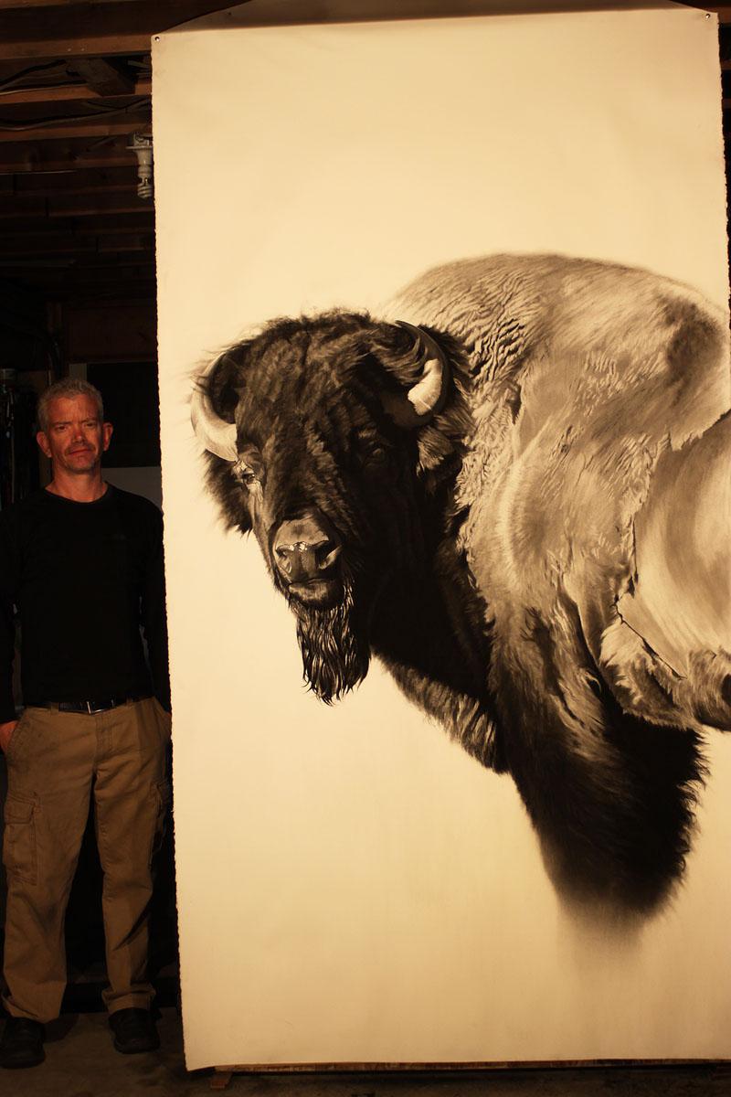 e Bison Study 2a w scale.jpg