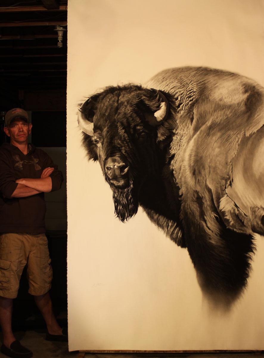 e Bison Study II w scale.jpg