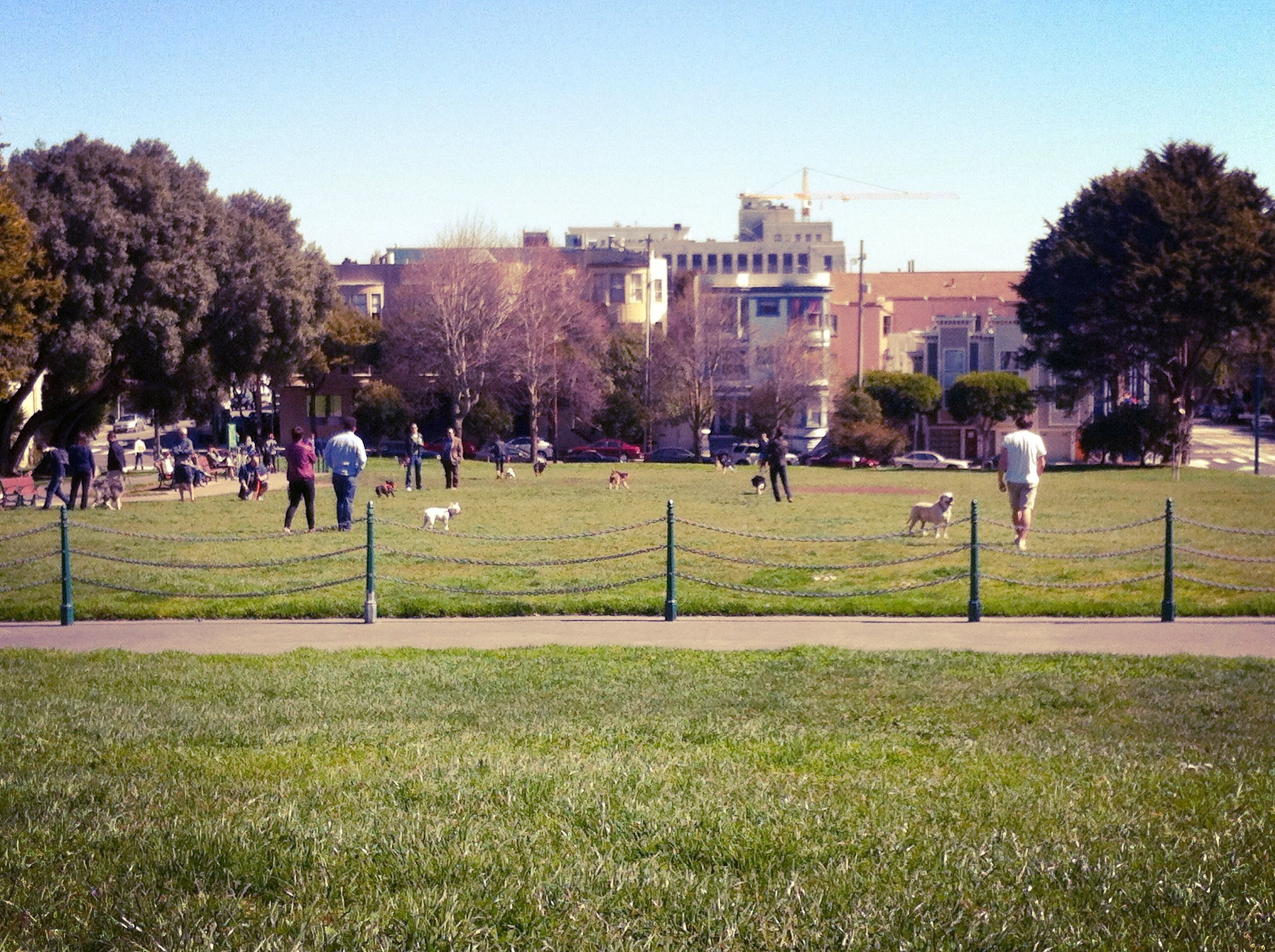 A little Duboce Park on Saturday morning