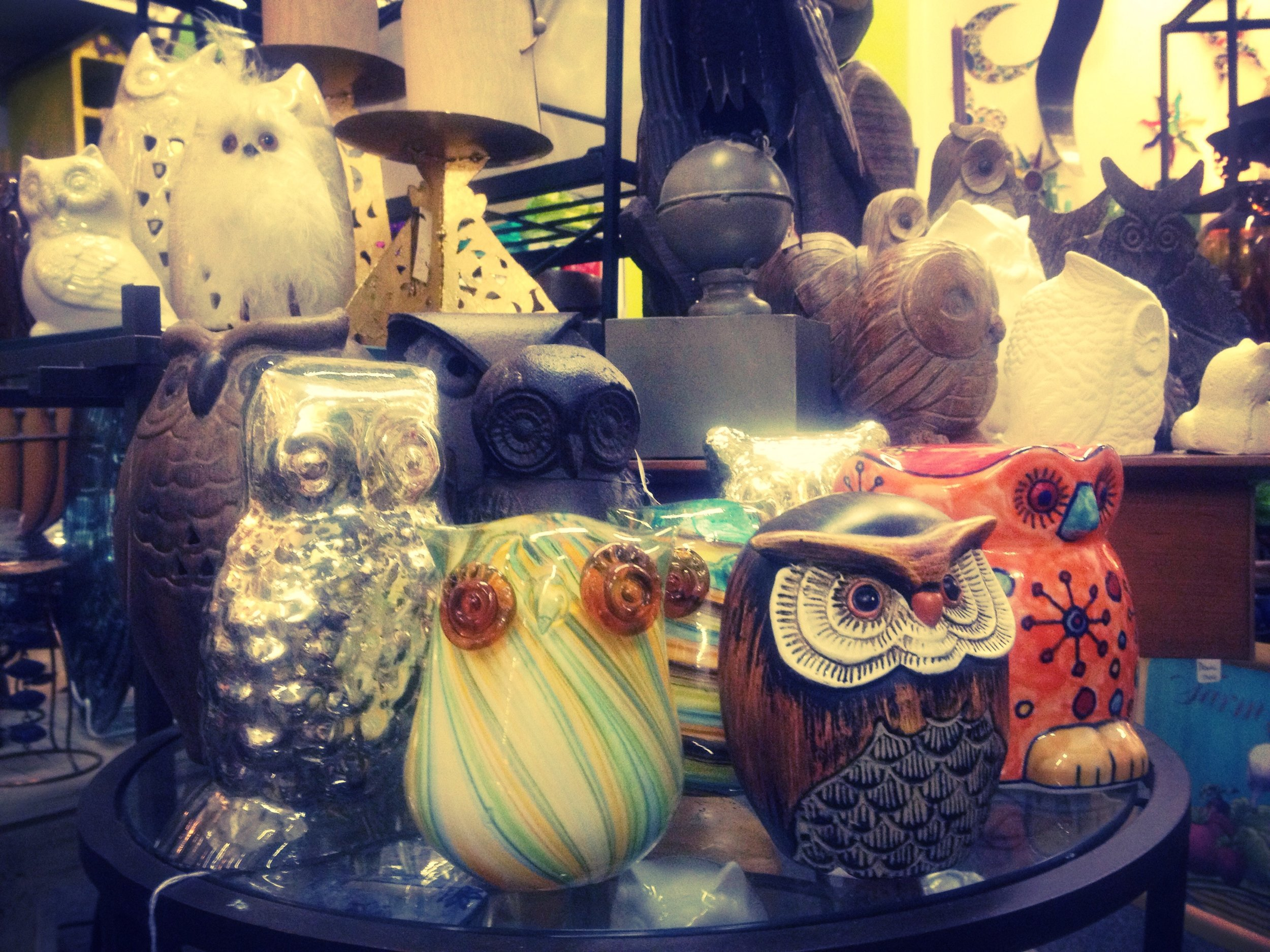 An owl display grand enough even Sam Fink would approve!