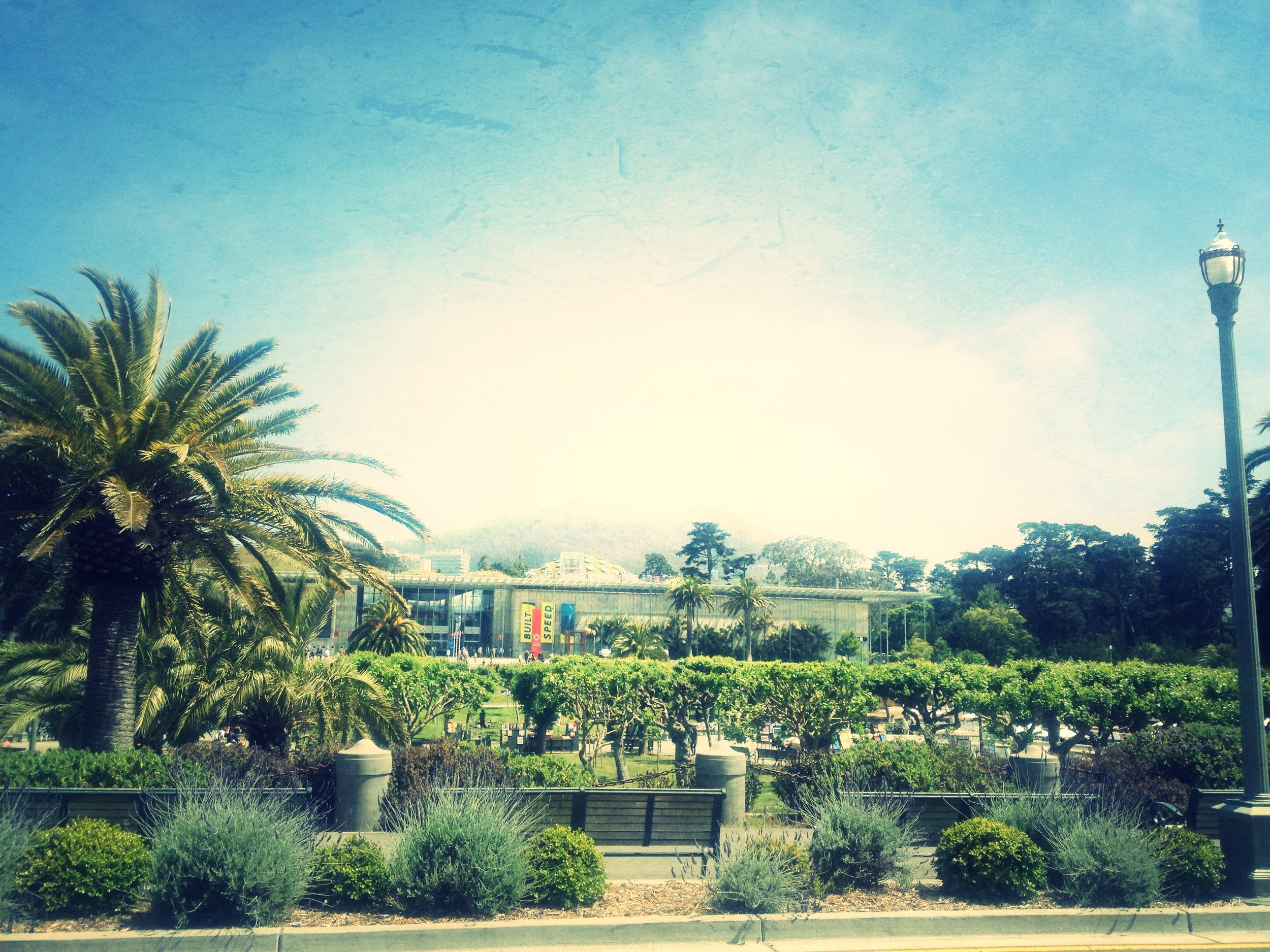 Beautiful day overlooking the Academy of Sciences.