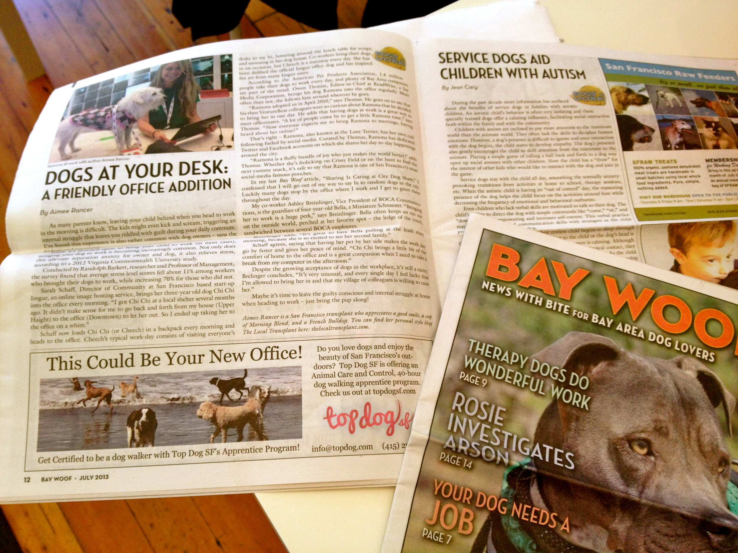 My Bay Woof article is out! Check it out!