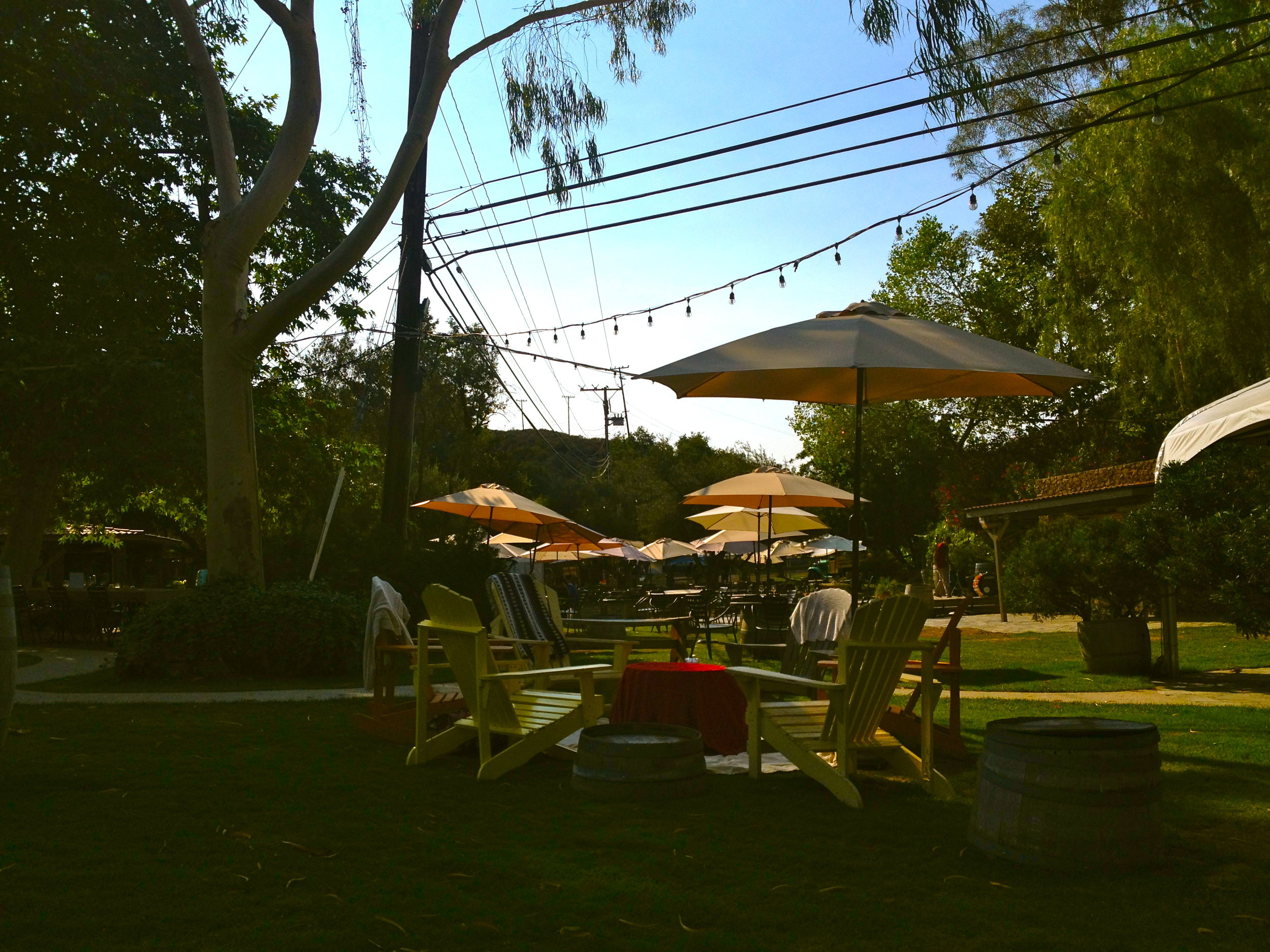 One of the cutest places tucked away in the hills. Malibu Wines is definitely a must!