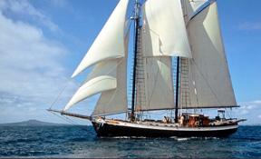 LENGTH: 90 ft. TYPE: Sail CLEARING HOUSE: Nicholson Yachts WEB SITE: www.schoonertreeoflife.com