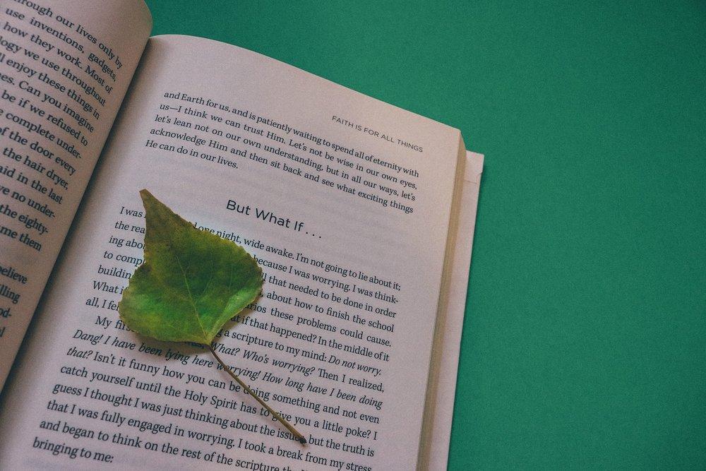 book-912727_1920.jpg