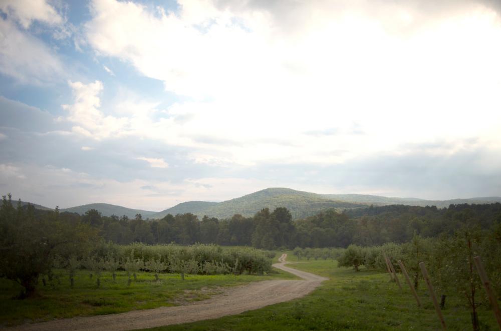 Grant Landscape.png