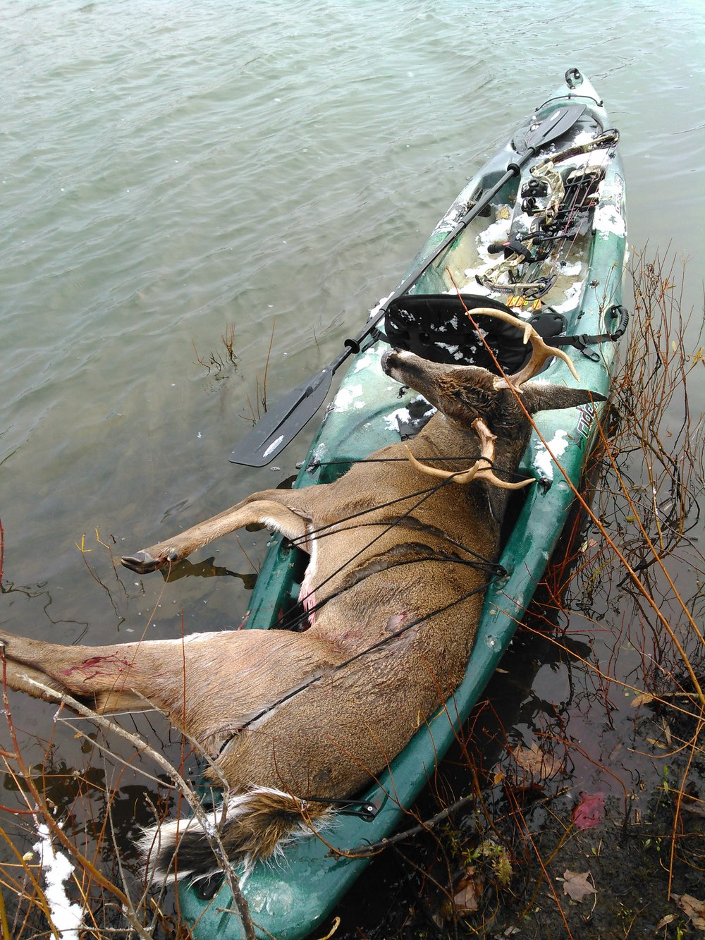 Dan harvested this nice public-land buck by kayaking in and hunting an island that the deer used as a bedding area