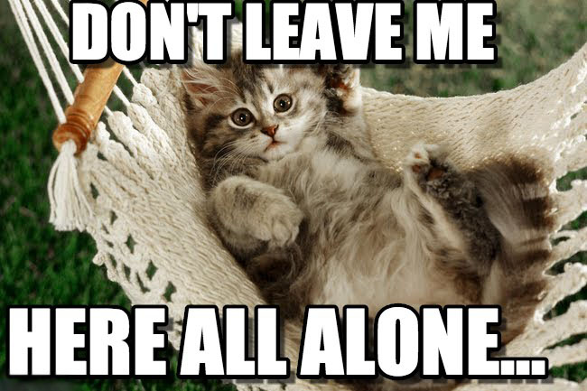 dont leave me.jpg