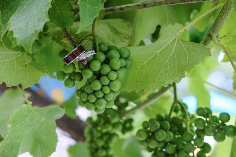 nashoba-valley-winery-wedding-photography-1120.jpg