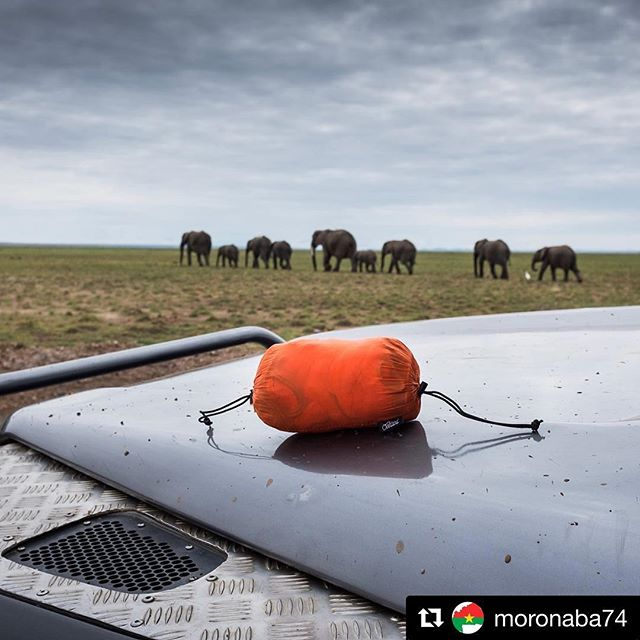 Since the clouds over Kilimanjaro wouldn't cooperate for a hanging shot, Philip captured a view of the @overlandhammock with a Defender and some elephants. Photo: @moronaba74  #getoverland #hammock #getoutside #kenya #mtkilimanjaro #africa #elephant #defender #overland
