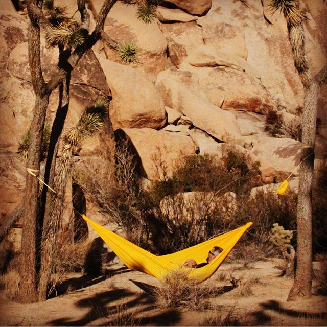Mission: Escape from the rainy Pacific Northwest. Results: Success all around. Warm sun in Joshua Tree looking up at the amazing formations to climb. #getoverland #hammock #joshuatree #slowlife #california #hammocking #getoutside #optoutside #tellon #getoutstayout @patagonia @persol