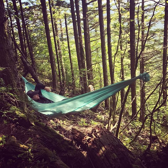 Hanging at Rattlesnake Ledge with the crew on the solstice. Good day at the office.  #getoverland #pnw #pnwonderland #getoutside #solstice #rattlesnakeledge #slowlife #hammock #hammocking #overlandhammock