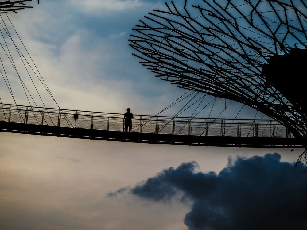 LDKphoto-SINGAPORE-SUPERTREE-013.jpg