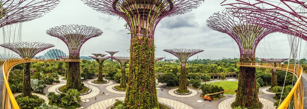 Supertrees - Singapour<strong>- entrez -</strong>