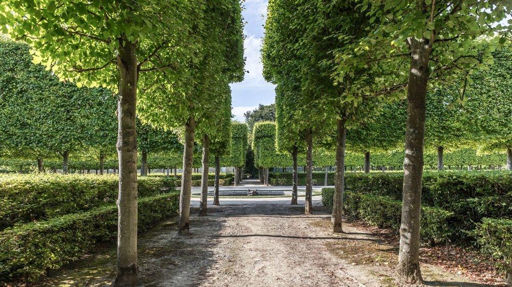 LDKphoto_Chateau de Versailles - 018.jpg