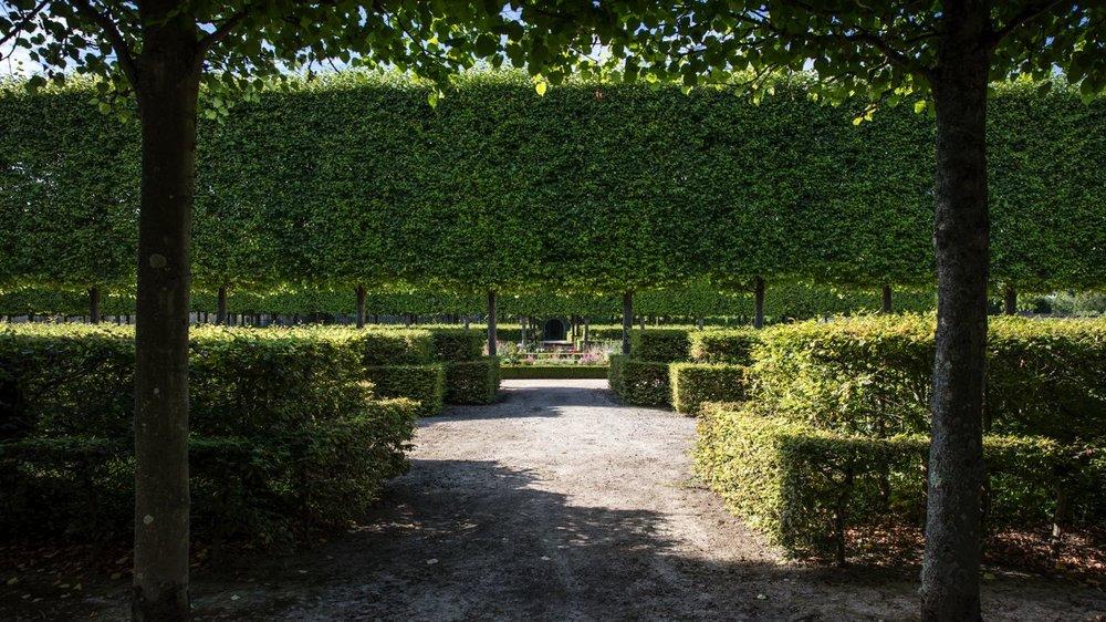 LDKphoto_Chateau de Versailles - 019.jpg