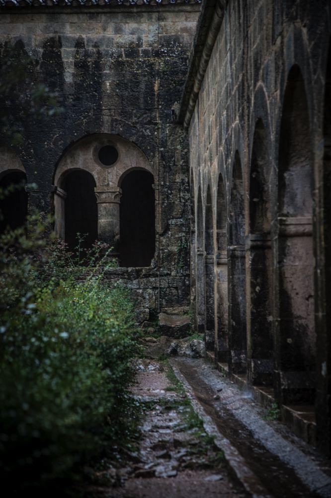 LDKphoto_Abbaye du Thoronet-046.jpg