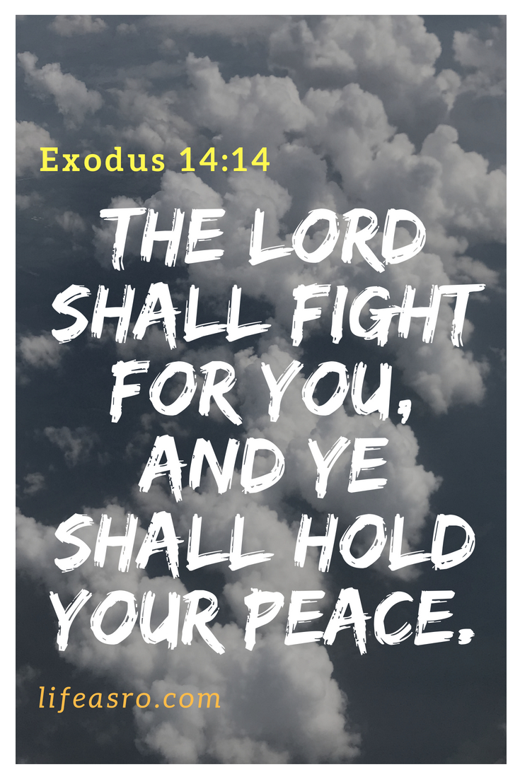 Exodus 14:14 The Lord shall fight for you, and ye shall hold your peace.