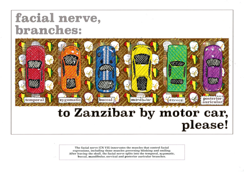 to Zanzibar by motor car please.jpg