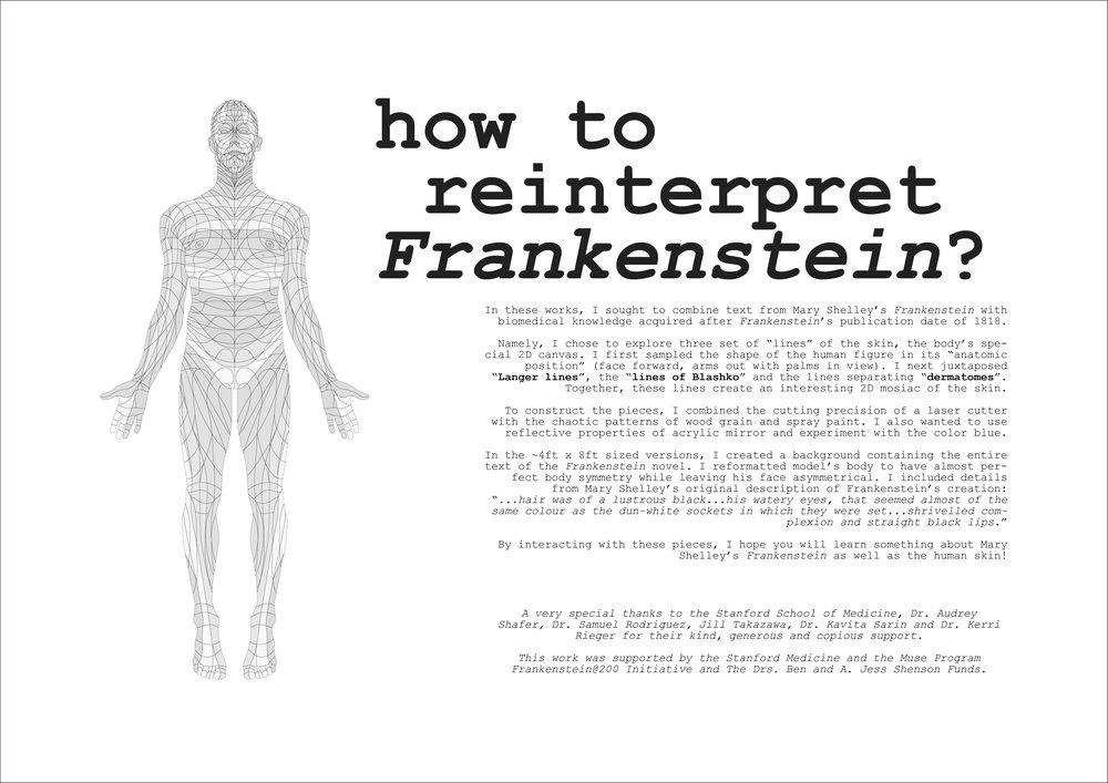frankenstein @ 200 idea