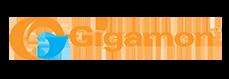 Gigamon Logo 1.png