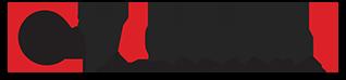 Vigilant Logo 1.png