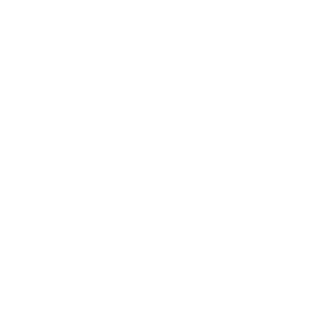 CyberAlliance Boundary-Icon-1-1 [Converted] White.png