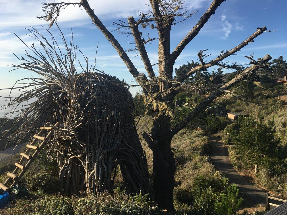 The Nest, Treebones, Big Sur