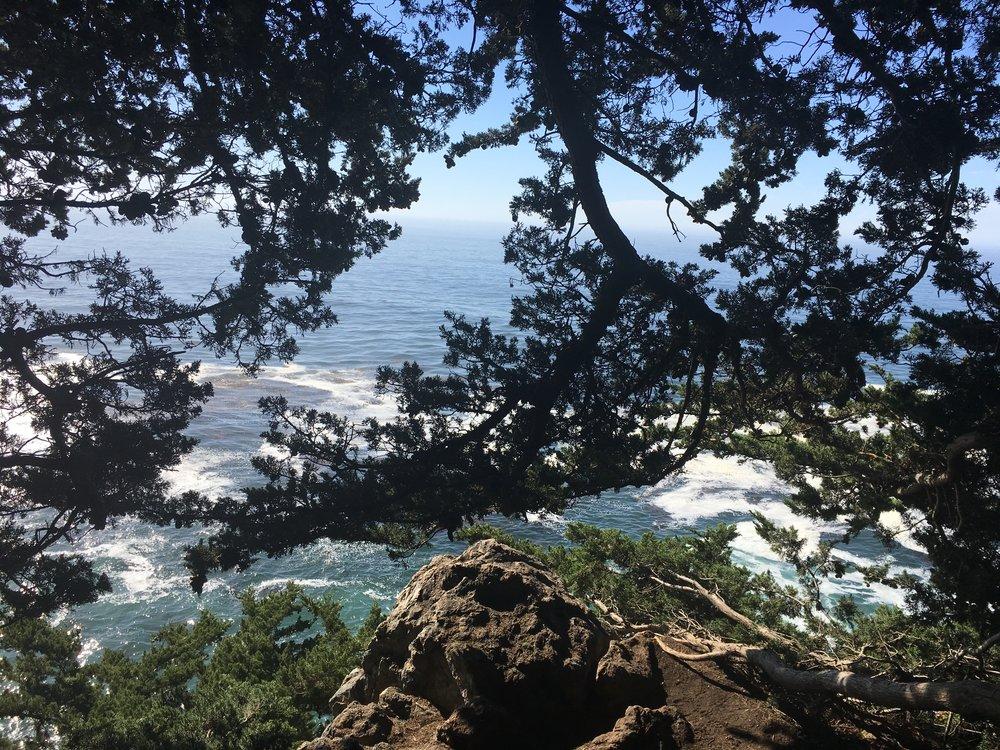 Seclusion,McWay Trail, Big Sur