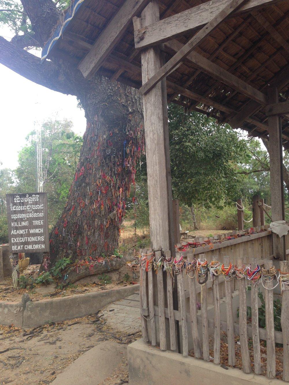 Killing Tree next to mass grave