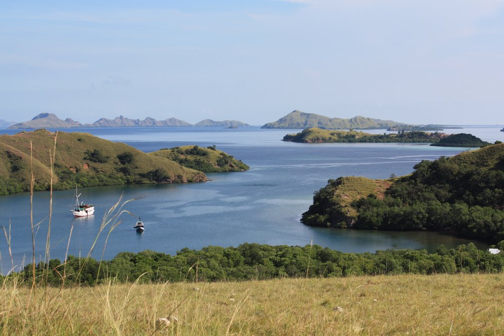 View from the top of Rinca Island, Komodo National Park