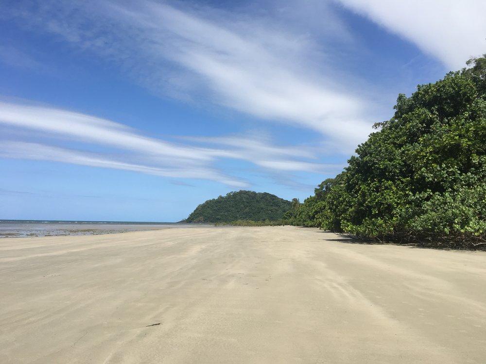 Not even a single footprint; Cape Tribulation, Australia