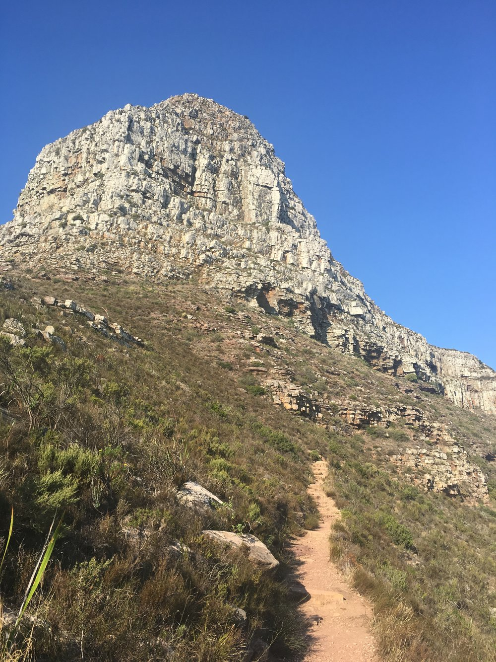 The trail to Lion's Head
