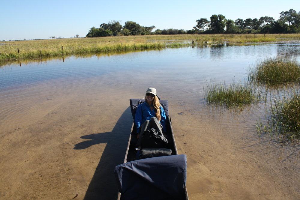 Riding in style in a mykoro, Okavango Delta
